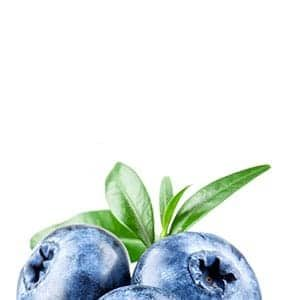 footer_blueberry